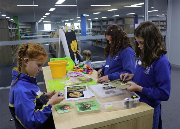 library science activity