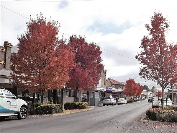 Main Street middle2 cmyk Guyra Gazette image