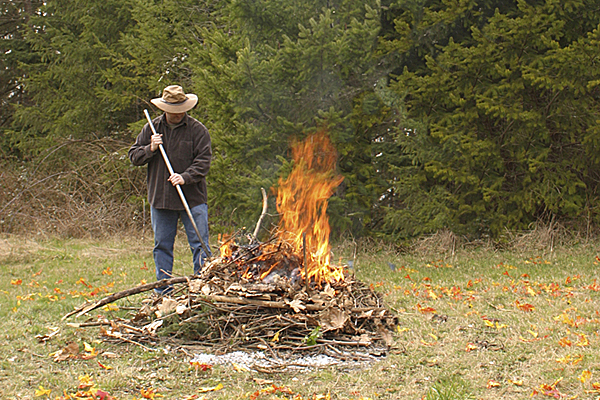 Burning of Vegetation
