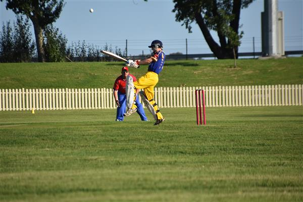 NSW Over 50s State Cricket Carnival crop