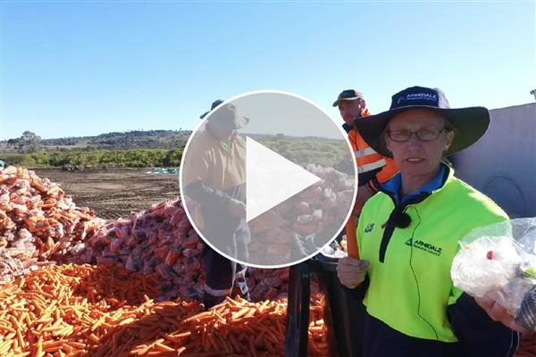 28 tonnes of bagged carrots